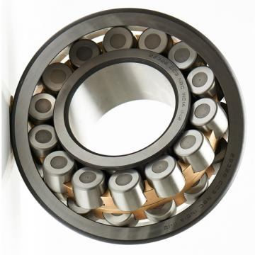 Self-Aligning Ball Bearing 1216 2216 1316 2316 Tn9 Etn9 2RS1tn9 Ekm Em M E-2RS1tn9 Ektn9 K Km