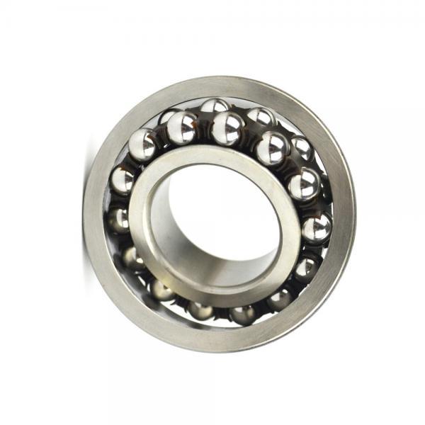 SKF NSK NTN IKO 6203 High Temperature High Speed Ceramic Ball Bearing #1 image